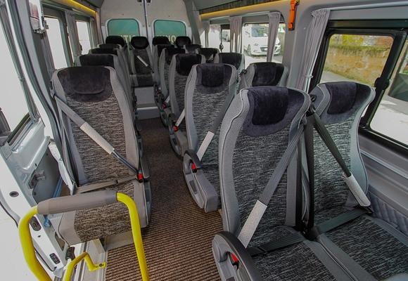19 + 1 School Bus